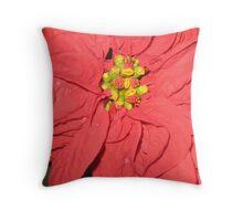 Poinsetta closeup Throw Pillow