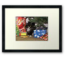 Secret Santa Framed Print