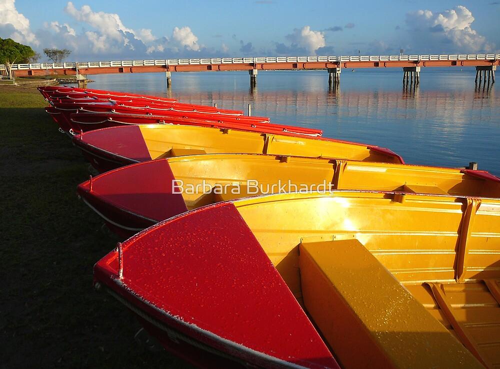 Red Hire Boats - Bribie Island by Barbara Burkhardt