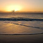 Let it Begin - Bribie Island by Barbara Burkhardt