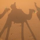 Caravan of camels in Sahara by buzb