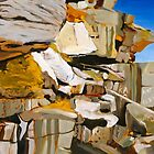 The Cliffs of North Bondi by Stephen Gorton