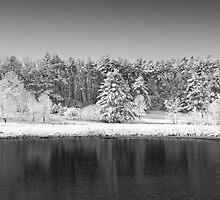 Winter Scene 2 by Edward Myers