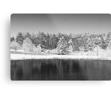 Winter Scene 2 Metal Print