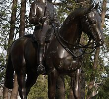Field Marshal in Bronze by Ken Thomas Photography