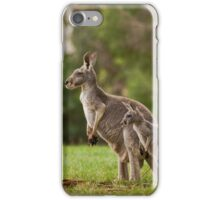 on the lookout.... iPhone Case/Skin