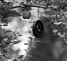 Apple and Weight Tree by Edward Myers