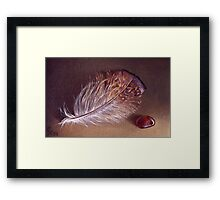 Still life with the feather #1 Framed Print