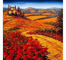 Tuscany Spring Road to the Villa Photographic Print