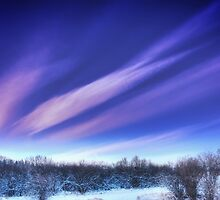 Winds Aloft by Doug Keech