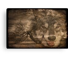 Willow Wolf Canvas Print