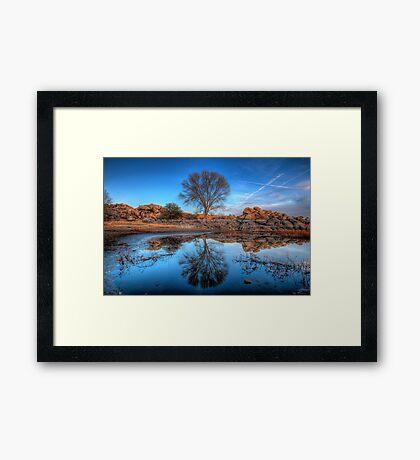 Rock Wall Tree Reflect Framed Print