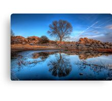 Rock Wall Tree Reflect Canvas Print