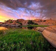 Willow Lake Round Rock by Bob Larson