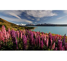 Pukaki Postcard Photographic Print