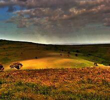Landscape by Jessy Willemse