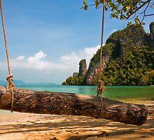 Tropical Beach Swing by Nickolay Stanev