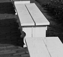 Benches by Edward Myers