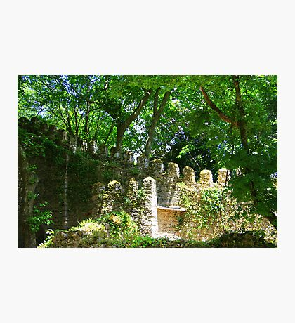 Overgrown ruins - Sintra (Portugal) Photographic Print