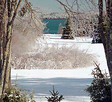 Icey Winter Wonderland  by Alana Ranney