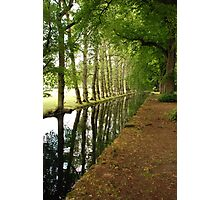 On the Way to Chenonceau Photographic Print