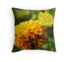 Yellow butterfly, Yellow flower Throw Pillow