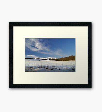 A702 Framed Print