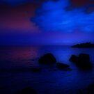 MIDNIGHT BLUES by leonie7
