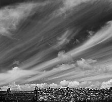 Dorset Stone & Sky by Nick Bradshaw