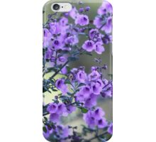 Mint Bush  iPhone Case/Skin