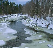 Near Freezing by Alana Ranney