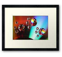Paw Prints Framed Print