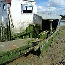 Rotting Boat by Danny  Thrussell