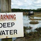 Danger Deep Water by Danny  Thrussell