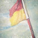 flag on coogee by roger  boreham