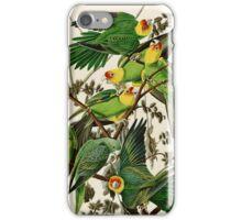 Carolina Parrot Audubon Birds of America iPhone Case/Skin