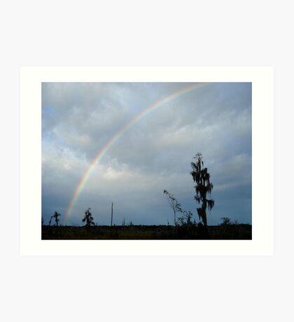 Rainbow over Econfina Creek 12/09 Art Print