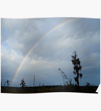 Rainbow over Econfina Creek 12/09 Poster