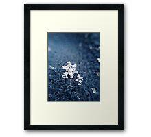 Blue Macro Snowflake Framed Print