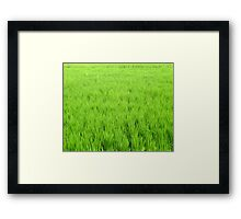 Green World & Fresh Pollution World Framed Print