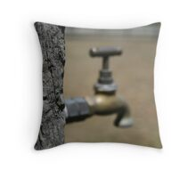 Sweltering Hot Throw Pillow