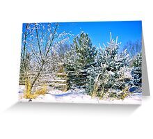 Idaho Winter Scene 1, USA Greeting Card