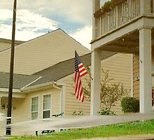 Flag Flipped by Sara Wood