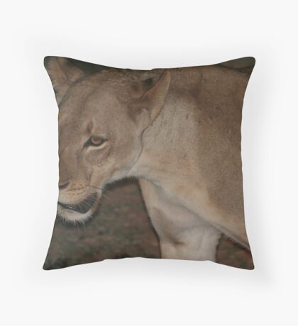 Lioness, night safari, South Luangwa National Park, Zambia Africa Throw Pillow