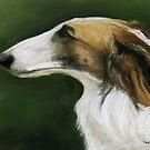 Borzoi Russian Wolfhound Pastel by Charlotte Yealey
