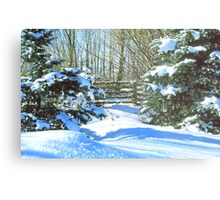 Idaho Winter Scene 2, USA Metal Print