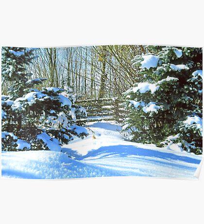 Idaho Winter Scene 2, USA Poster