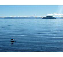 Lone Gull on Lake Taupo Photographic Print