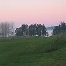 Dawn Light, Waitomo, New Zealand  by Amy Hale