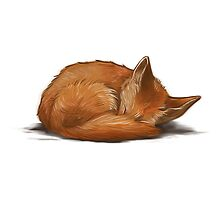 Let Sleeping Foxes Lie by helenasia